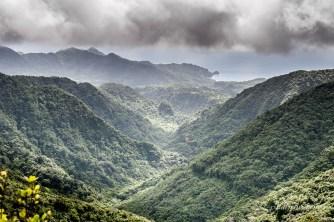 Les montagnes de l'île Dominique recouvertes de végétation
