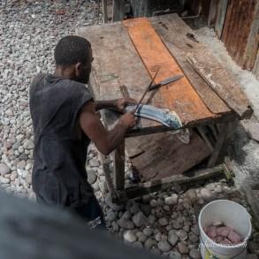 Un pêcheur prépare une dorade coryphène