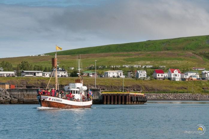 Un bateau emmène des touristes voir les baleines.