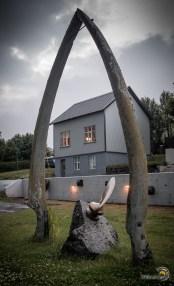 De nombreux os de baleines ornent les maisons des habitants des fjords !