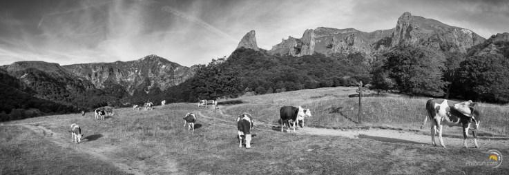 La dent du Coq domine la vallée de Chaudefour