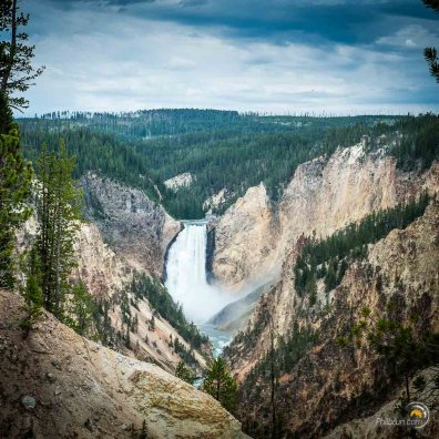 La chute d'eau du canyon de Yellowstone vue d'en face.