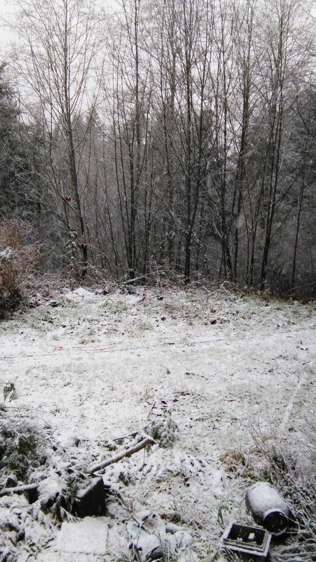snow-at-summersood-dec-2015-001