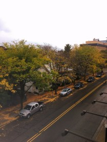 An Ann Arbor Fall