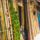 Concurrence sur le bambou