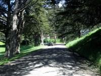 Marin Headlands Hostel