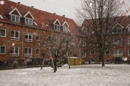 SnowSpring-3