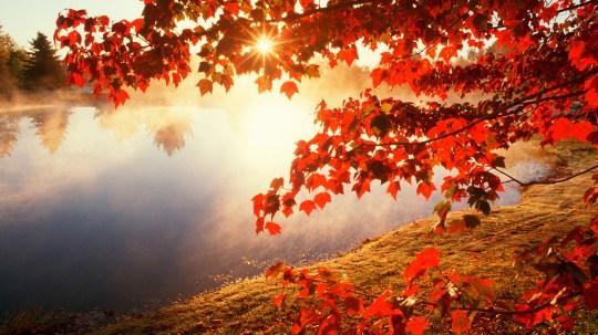 autumn-lake