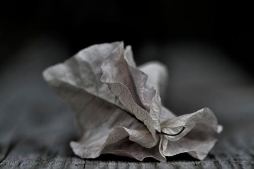'Fallen Fragility' _ Russell Styles