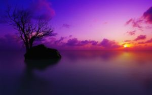 purple ocean balck stone