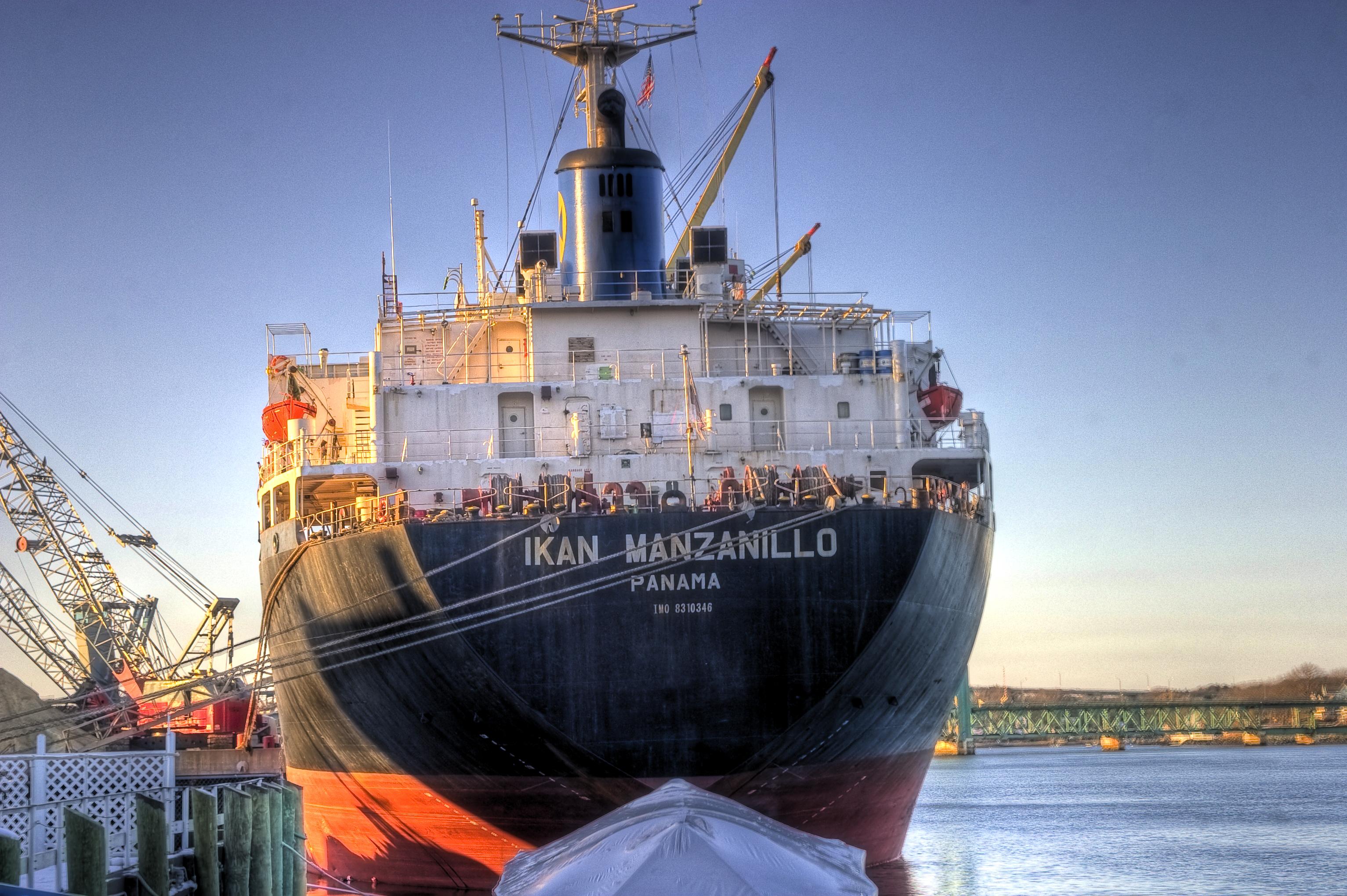 ikan manzanillo