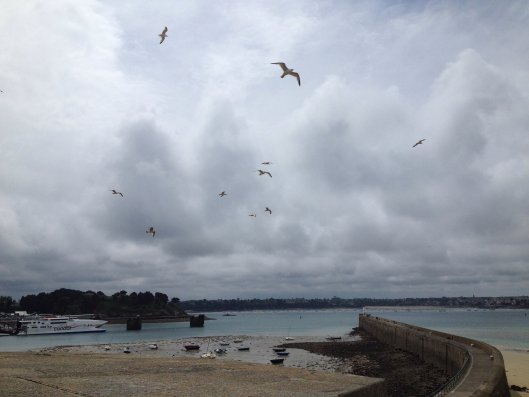 Gulls flying in circles above the ramparts