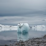 Philip Kanwischer ice burg burgy bits reindeer caribou photography surreal art work arctic Svalbard deep time residency