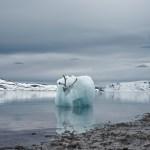 Philip Kanwischer ice burg burgy bits reindeer caribou photography surreal art work arctic Svalbard deep time residency