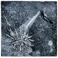 anenome,6x6,aquatint,2010