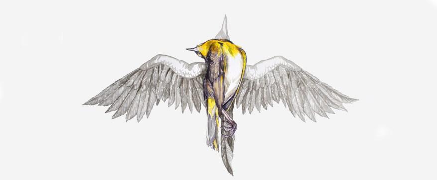 banner-bird
