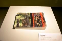 Nature Present, artwork featured: Matthew Hollett, names will never hurt me, from Small Landmarks 2014, artist multiple postcard