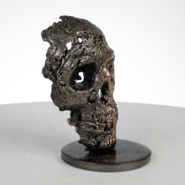 Crane A - Sculpture tete de mort acier bronze - Vanite art - Skull artwork steel bronze - Buil
