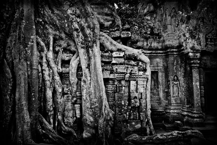 Ta Prohm (n&b)