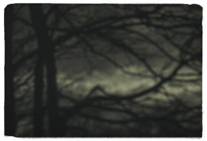 distant-memories-_0000s_0000_057 A