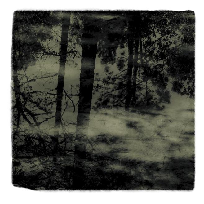 distant-memories-_0000s_0010_097 B