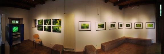 """L'exposition """"Le paradis vert"""" à la Maison de la réserve, Petite Camargue Alsacienne (2)"""