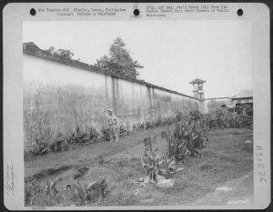 Ex-POW Arthur Raynoldsvisiting Old Bilibid Prison graveyard, 1945