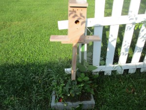 birdhouse plant stand