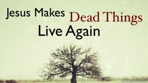 Jesus Makes Dead Things Live Again