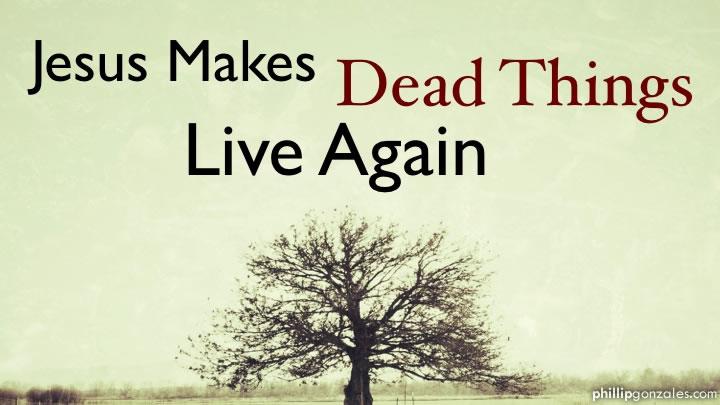 Jesus Makes Dead Things Live Again