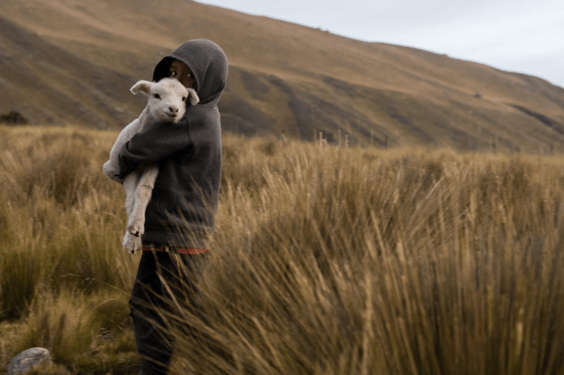 A boy carries his lamb as we stop for fresh air at 13,000 vertical feet.