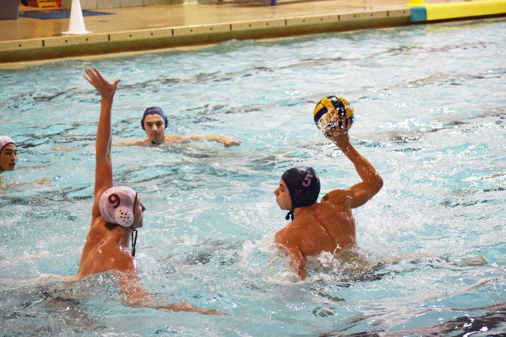 Andover Boys Water Polo Secures Victories Against  St. John's Prep and Suffield