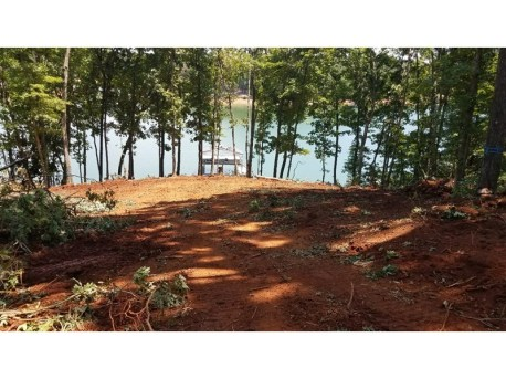 The view from the lot of lake Hartwell.