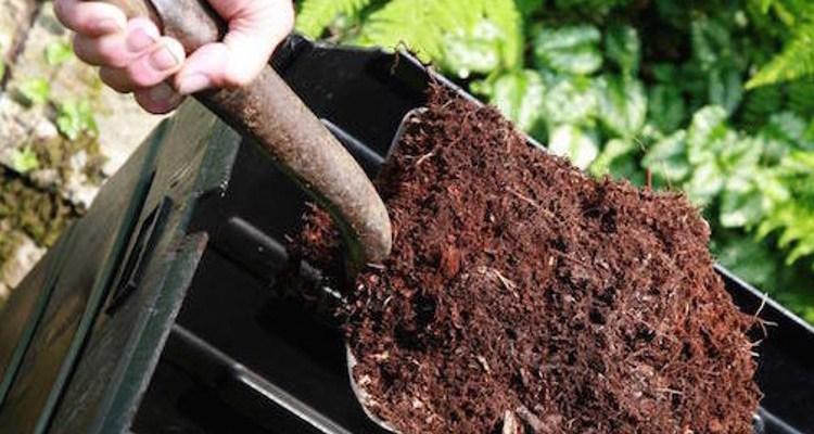 Man digging soil for organic garden