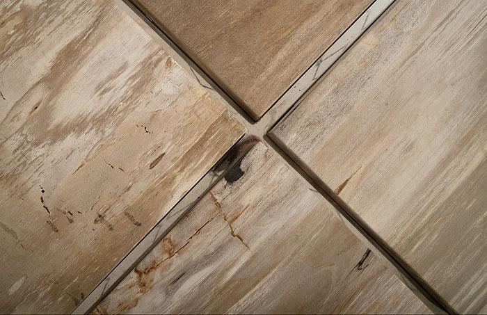 Petrified Wood Coffee Table / SS Base