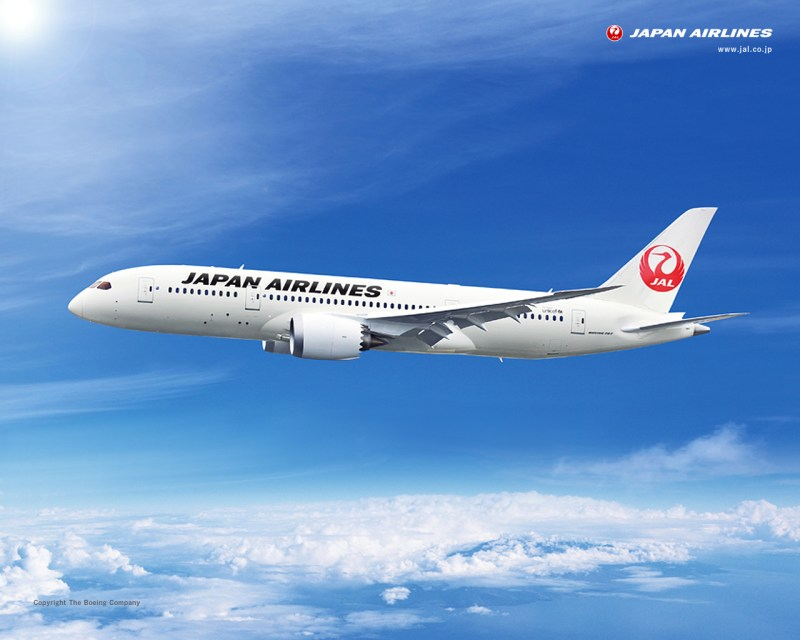 JAL 787-800