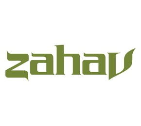 Zahav Review: Lamb Shack