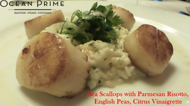 Ocean Prime - Sea Scallops