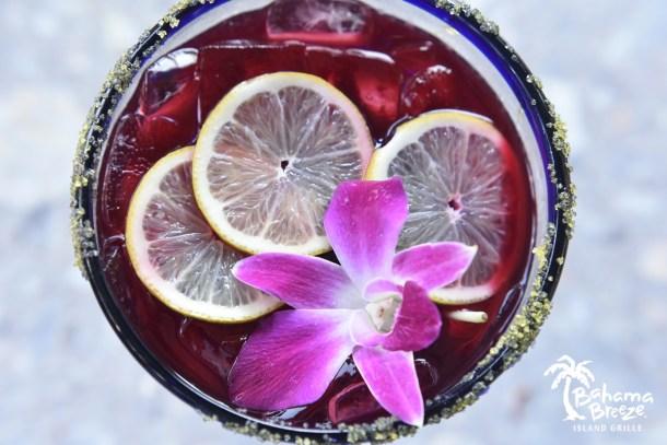 Bahama Breeze Hibiscus Margarita Close-Up