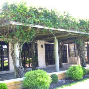 Careme's Restaurant Open for Lunch Featuring Farm-to-Table Cuisine