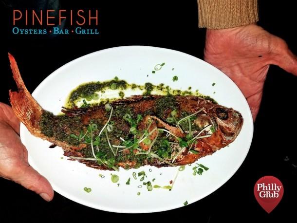 Whole Fish at Pinefish
