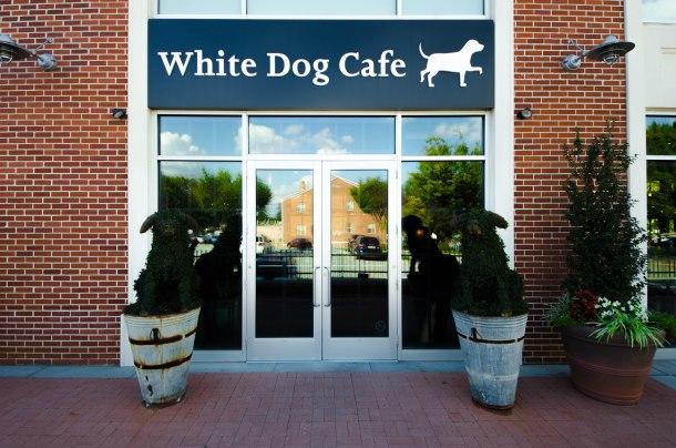 White Dog Wayne PA