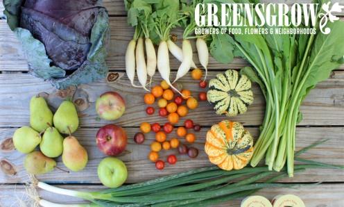 Summer CSA Greensgrow