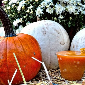 PHS Pop Up Garden at South Street Runs Through October