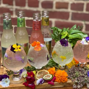 Garden Oasis Terrassa Debuts Adjacent to Fabrika in Fishtown