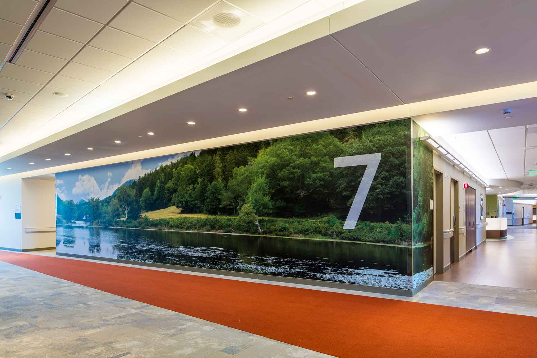 large 48 foot wall mural of long pond, mt desert island