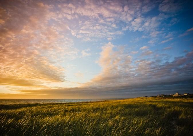 sunrise over grassy coast