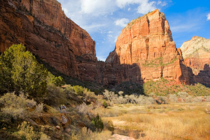 trail on zion canyon
