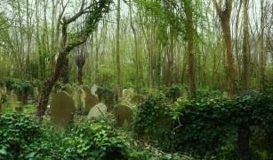 Flickr_-_Duncan~_-_Highgate_Cemetery_(1)