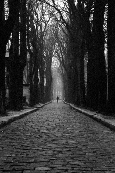 Père-Lachaise_avenue_fog